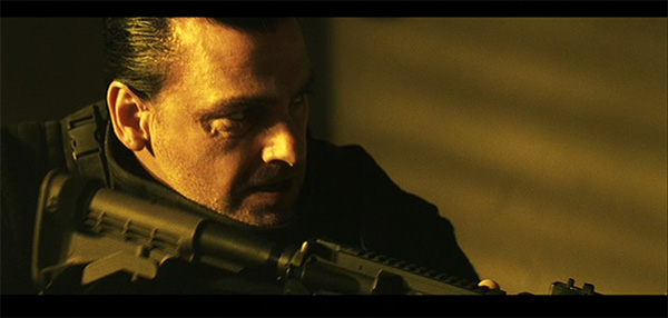 Punisher (2009): Ray Stevenson as Punisher